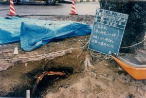 盛土の下、太根は腐っていた。