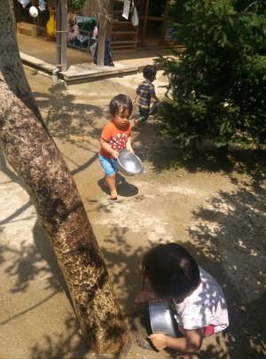 酷暑で弱った銀杏に水をやる1歳児