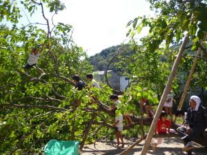 養生作業を終えると、心配そうに見ていた子どもたちが一斉に登り始めた、